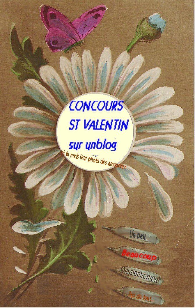 concours.jpg